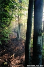 Early light by chris in Views in Virginia & West Virginia
