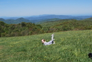 Max Patch, May 2009 by slow roasted in Section Hikers