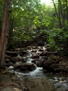 Waterfall by BostonAndy in Members gallery