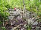 Bear Mt. Climb