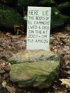 Grave Stone Of El Camino's Boots by ShoelessWanderer in Trail & Blazes in Connecticut