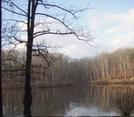 Morning View At Bear Creek Lake State Park by ShoelessWanderer in Views in Virginia & West Virginia