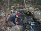 Appalachian Trail Through Ny March 09 by fallstherain in Section Hikers