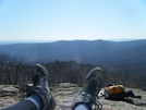 Bear Mountain by fallstherain in Section Hikers
