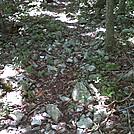 img-20110816-00066 by vamelungeon in Trail & Blazes in Virginia & West Virginia