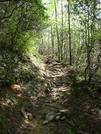 Russel Field Trail by Engine in Views in North Carolina & Tennessee
