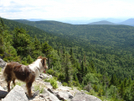 White Mts, New Hampshire by MIKE MAMMY in Members gallery