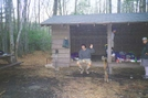Pine Swamp Branch Shelter