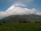 Fog On Roan Mountain by Ol Mole in Members gallery