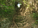 1200 Year Old Yamada Bridge Steps by World-Wide in Other Trails