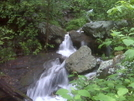 Pinhoti Trail - Dug Gap To Keown Falls by NoGaHiker in Members gallery