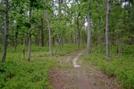 Mullica River Trail
