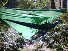 Hammocks W/ Tent Flies by cwayman1 in Hammock camping