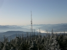 Clingman's Dome by vauxy in Section Hikers