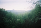 Camera #5 by freechild in Trail & Blazes in North Carolina & Tennessee
