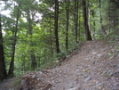 At Section Hike Sept. 2009 by toegem in Trail & Blazes in Virginia & West Virginia