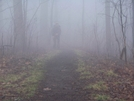 Foggy Walk To Gooch Gap Shelter by blue07 in Section Hikers