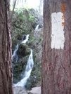 Fitzgerald Falls/ White Blaze! by Bezekid609 in Section Hikers