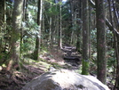 Along The Tn/nc Line by Bezekid609 in Thru - Hikers