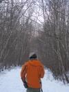 White Birch New Growth Forest Winter Walks by Bezekid609 in Members gallery