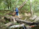 Elk River Trail by Drew J in Members gallery