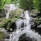 Dark Hollow Falls hike by Deer Hunter in Other Trails