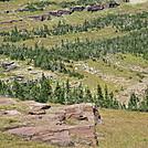 montana trip 2009 112
