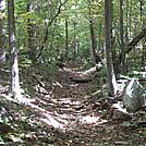 Rapidan Camp loop hike via Big Meadows