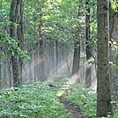 rt. 670 to i 81 atkins 013 by Deer Hunter in Trail & Blazes in Virginia & West Virginia