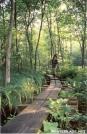 On the endless boardwalks by Jumpstart in Trail & Blazes in New Jersey & New York