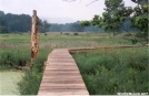 New Boarwalk on the way to Vernon, NJ by Jumpstart in Views in New Jersey & New York