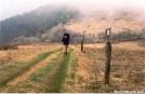 """""""Frosty"""" hiking in the fog up one of the balds by Jumpstart in Trail & Blazes in North Carolina & Tennessee"""