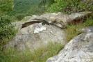Rattlesnake by Shanollie2003 in Snakes
