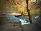 More Arcadia by datadog314 in Members gallery