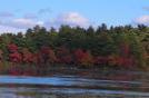 Autumn In Ri by datadog314 in Members gallery