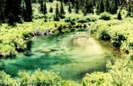 Pond On Lake Solitude Trail by michele3868 in Members gallery
