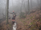 Mt Cammerer Trail / At At Cosby , Tn by 10aseejed in Section Hikers