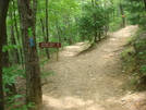 0007 2009.07.11 Approach Trail And Hike Inn Trail Split