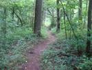 0021 2009.07.12 Approach Trail