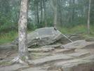 0026 2009.07.12 Springer Mountain Cnf Plaque