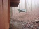 0078 2010.03.12 Attila's Hammock At Low Gap Shelter by Attila in Hammock camping
