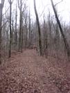 0086 2010.03.13 Chattahochee Gap Trail