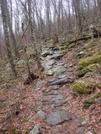 0090 2010.03.13 Trail Leading To Rocky Knob by Attila in Trail & Blazes in Georgia