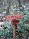 0105 2010.06.11 Bear Clawed Indian Grave Gap Trail Marker by Attila in Trail & Blazes in Georgia