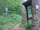 0113 2010.06.11 Nobo Trail At Tray Gap