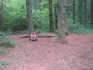 0135 2010.06.12 Cowart Gap Campsite