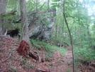0136 2010.06.12 As Knob Trail