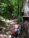 0142 2010.07.13 NC/GA State Line NOBO Trail by Attila in Trail & Blazes in North Carolina & Tennessee