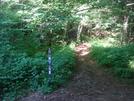 0150 2010.07.13 Deep Gap Nobo Trail From USFS 71 by Attila in Trail & Blazes in North Carolina & Tennessee