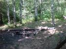 0153 2010.09.04 Beech Gap Campsite by Attila in Trail & Blazes in North Carolina & Tennessee
